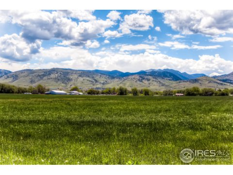 Farm and Ranch - Longmont, CO (photo 4)