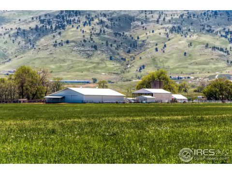 Farm and Ranch - Longmont, CO (photo 5)