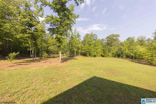 355 Wildberry Ln, Sylacauga, AL - USA (photo 4)