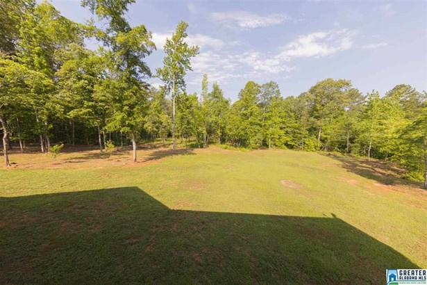 355 Wildberry Ln, Sylacauga, AL - USA (photo 5)