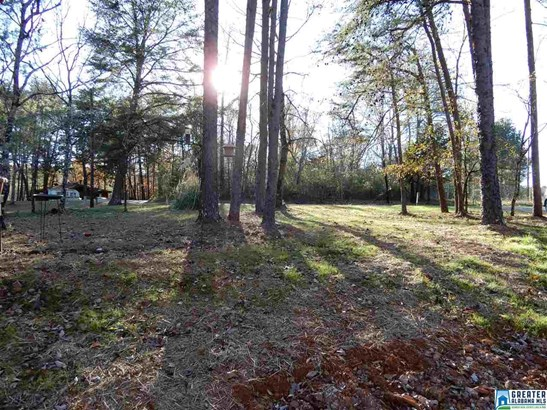 3797 Raceway Pkwy, Mount Olive, AL - USA (photo 5)
