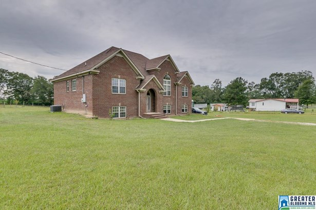 603 Co Rd 407, Clanton, AL - USA (photo 4)
