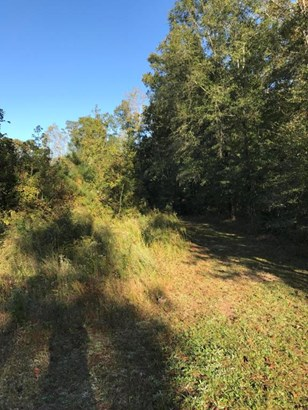Lee Rd 651, Camp Hill, AL - USA (photo 5)