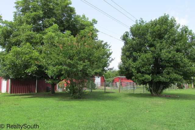 710 Hwy 20, Tuscumbia, AL - USA (photo 3)