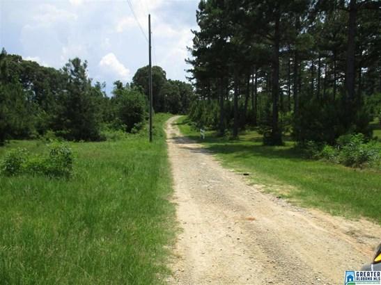14167 Co Rd 15, Maplesville, AL - USA (photo 1)