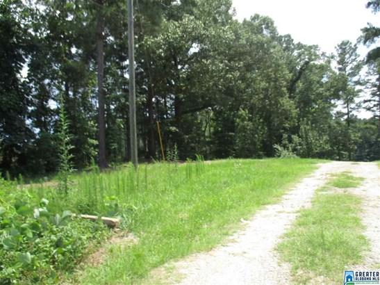 14167 Co Rd 15, Maplesville, AL - USA (photo 3)