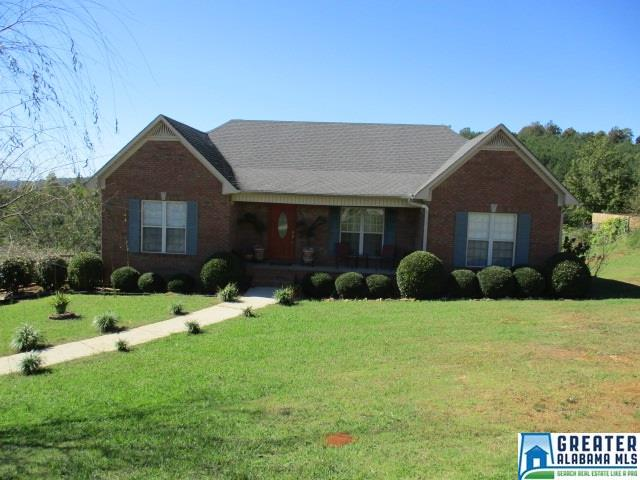 905 Ransome Dr, Oneonta, AL - USA (photo 1)