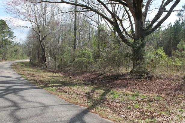 Lee Rd 651, Camp Hill, AL - USA (photo 3)