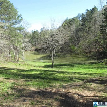 2294 Sims Rd, Oneonta, AL - USA (photo 5)