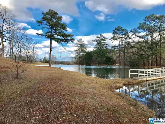 5989 Old Huntsville Rd, Mc Calla, AL - USA (photo 4)