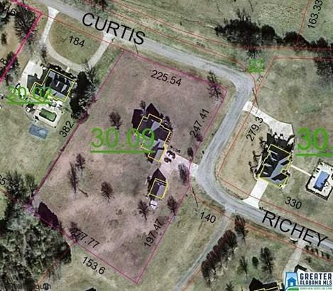 142 Curtis Richey Rd, Locust Fork, AL - USA (photo 2)