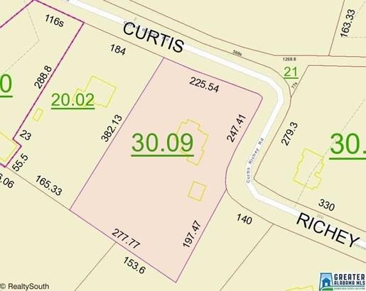 142 Curtis Richey Rd, Locust Fork, AL - USA (photo 3)