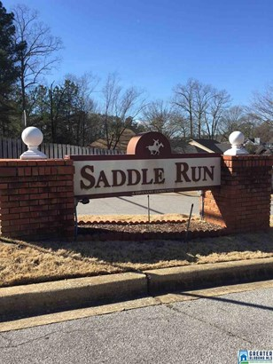 4068 Saddle Run Cir, Pelham, AL - USA (photo 2)