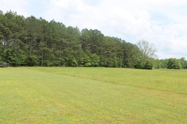 Lee Rd 651, Camp Hill, AL - USA (photo 1)