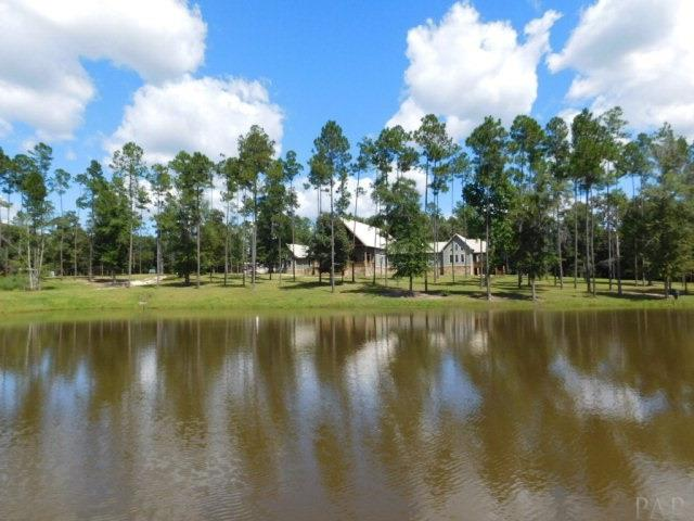 49890 Pimperl Rd, Bay Minette, AL - USA (photo 5)