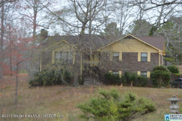 5281 Hollis Goodwin, Dora, AL - USA (photo 1)