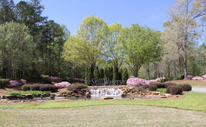 Lot 19 Doeskin, Dadeville, AL - USA (photo 2)