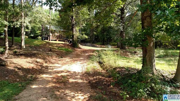 31 Springwell Rd, Rockford, AL - USA (photo 5)