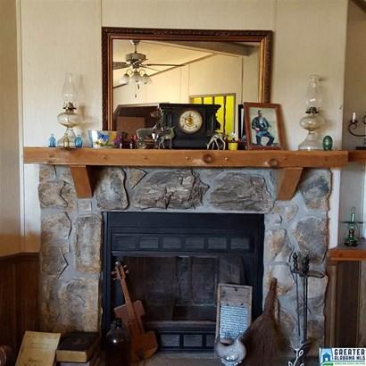 11082 Hickman Chapel Rd, West Blocton, AL - USA (photo 3)