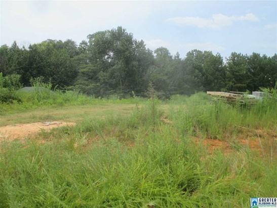 131 Hidden Meadows Dr, Hayden, AL - USA (photo 1)