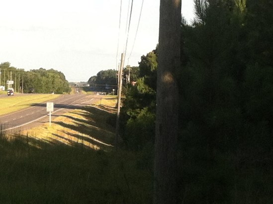 1080 Hwy 280 West, Alexander City, AL - USA (photo 3)