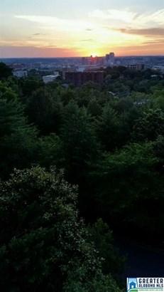 2900 Redmont Park Cir 101w, Birmingham, AL - USA (photo 1)