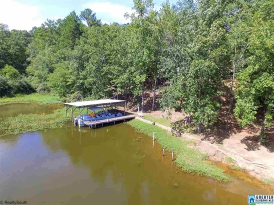 50 Duck Cove Ln, Shelby, AL - USA (photo 2)