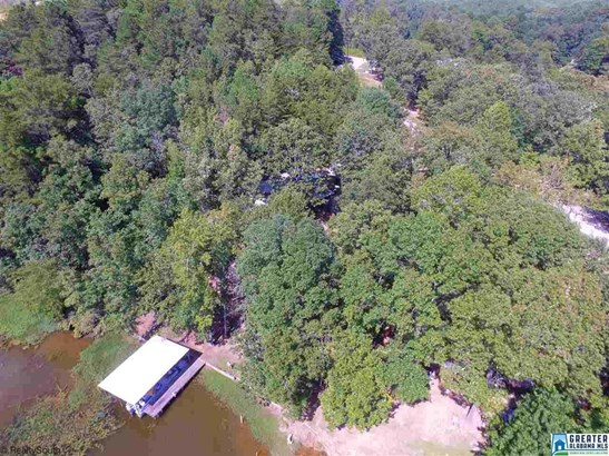 50 Duck Cove Ln, Shelby, AL - USA (photo 3)