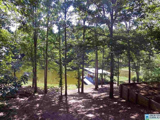 50 Duck Cove Ln, Shelby, AL - USA (photo 4)