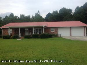 1304 County Road 54, Haleyville, AL - USA (photo 1)