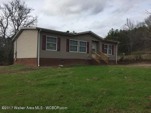 103 Sherer, Jasper, AL - USA (photo 1)