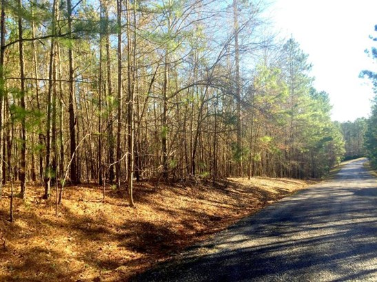 Lot 45 Tanglewood Court, Dadeville, AL - USA (photo 1)