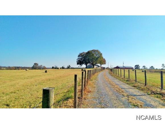 227 Co Rd 1431, Cullman, AL - USA (photo 2)