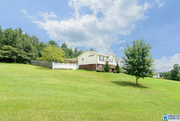 71 Sunrise Dr, Odenville, AL - USA (photo 3)