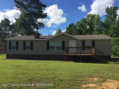 440 County Road 206, Arley, AL - USA (photo 1)