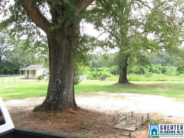 3210 Hwy 31, Verbena, AL - USA (photo 3)