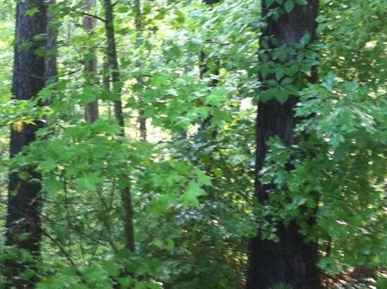 Lot 35 Water Oak Run, Jacksons Gap, AL - USA (photo 5)