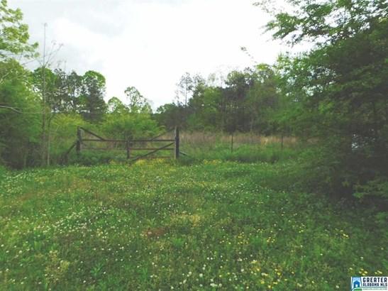 320 Walker Gap Rd, Springville, AL - USA (photo 1)