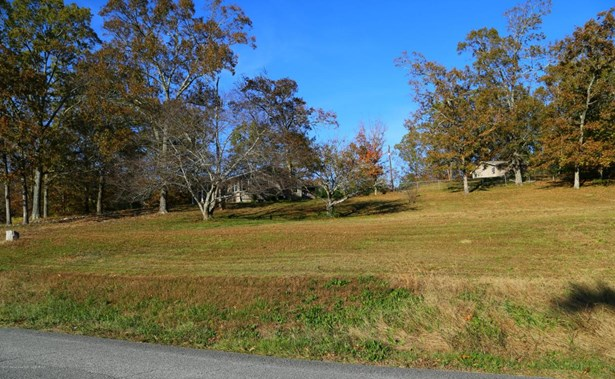1802 28th, Haleyville, AL - USA (photo 4)
