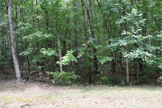 Lot 87 Shadow, Dadeville, AL - USA (photo 2)