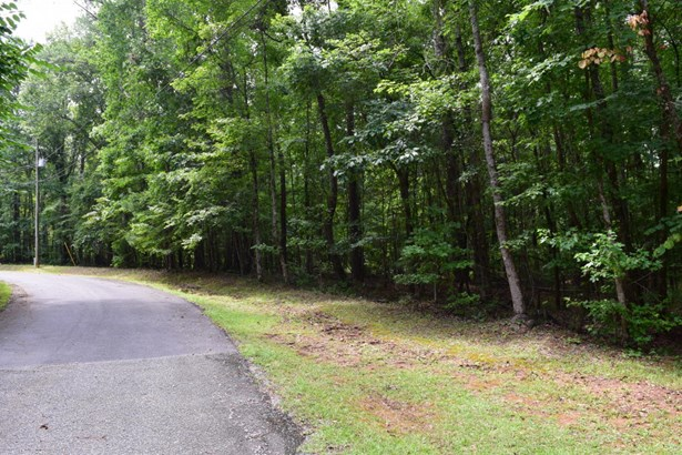 Lot 87 Shadow, Dadeville, AL - USA (photo 3)