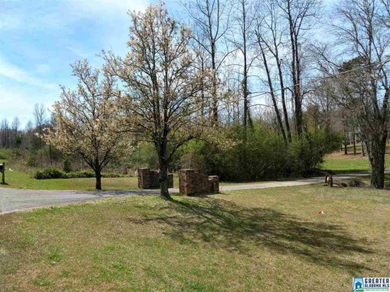 7587 Co Rd 49, Goodwater, AL - USA (photo 2)