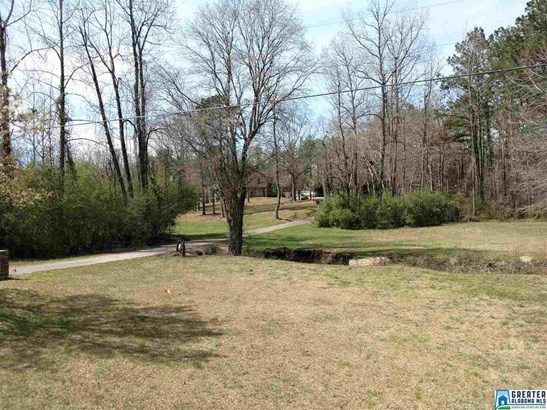 7587 Co Rd 49, Goodwater, AL - USA (photo 3)
