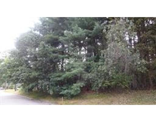 251 Dunstable Road, Chelmsford, MA - USA (photo 4)