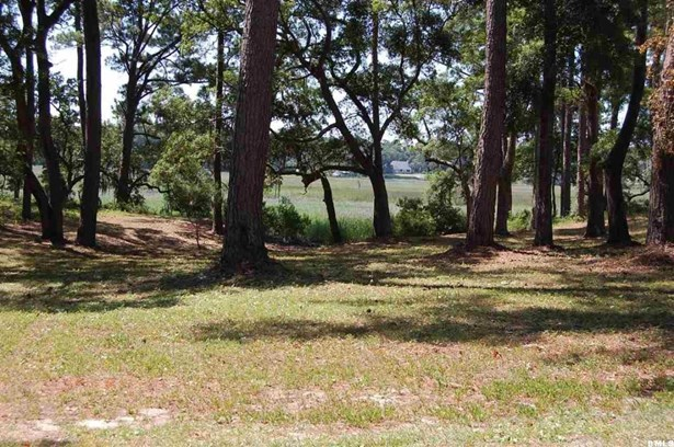 Resident S/D Lot - Beaufort, SC (photo 2)