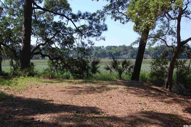 Resident S/D Lot - Beaufort, SC (photo 4)