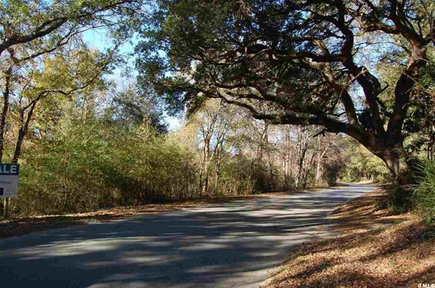 Acreage/Farm Plantation - Beaufort, SC (photo 1)