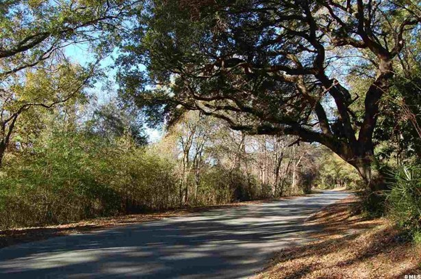 Acreage/Farm Plantation - Beaufort, SC (photo 2)
