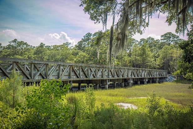 Acreage/Farm Plantation - Dataw Island, SC (photo 2)