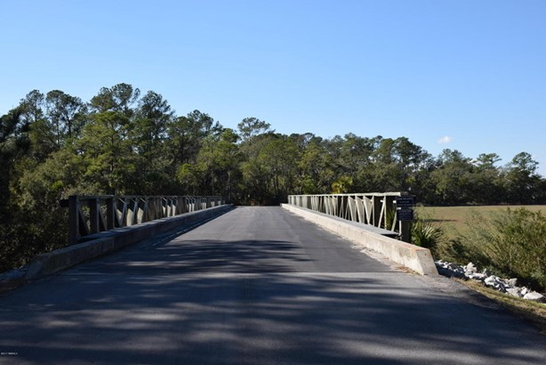 Acreage/Farm Plantation - Dataw Island, SC (photo 4)